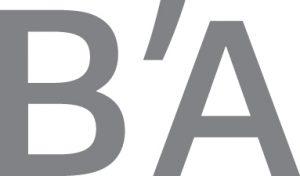 Logo gris Marque Bassin d'Arcachon