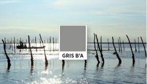 logo gris B'A